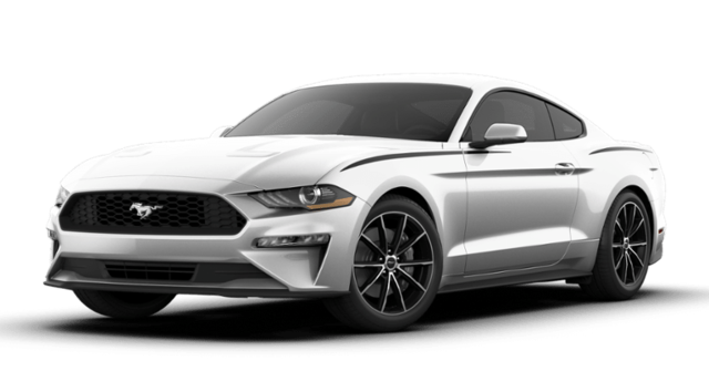 New 2019 Ford Mustang Ecoboost Coupe in Danbury, CT